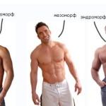 Типы телосложения мужчин и женщин