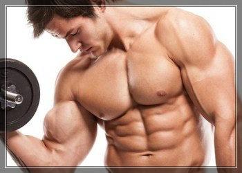 мышцы гантели