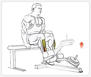 Подъемы носков - выполнение упражнения