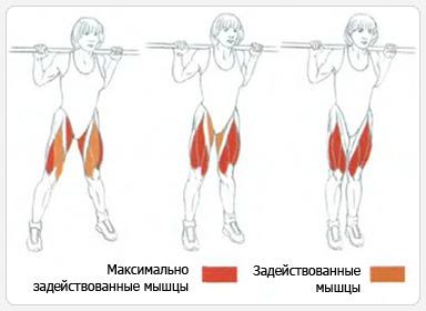 положения ног при выполнении приседаний
