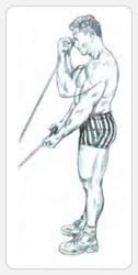 Вариант упражнения выжимая обеими руками