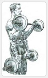 Выполнение упражнения сгибание рук со штангой хватом сверху