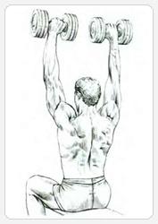 Жим гантелей сидя - окончание упражнения