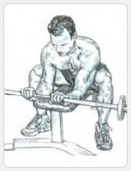 Окончание движения упражнения - разгибание запястий со штангой хватом сверху