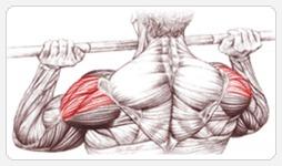 упражнения на плечи - cредние дельты