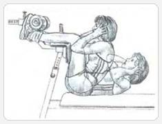 Выполнение упражнения подъемы туловища на вертикальной скамье