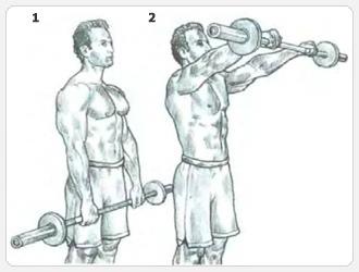 Выполнение упражнения - подъемы штанги вперед