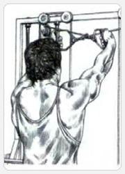 Перекрестные махи руками назад с верхних блоков - начало упражнения