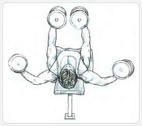 Разведение гантелей лежа - выполнение упражнения