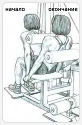 Разгибания туловища на тренажере. Выполнение упражнения