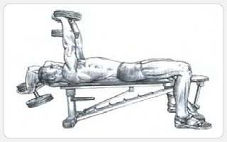 Тяга гантели из-за головы лежа PULL-OVER - выполнение упражнения