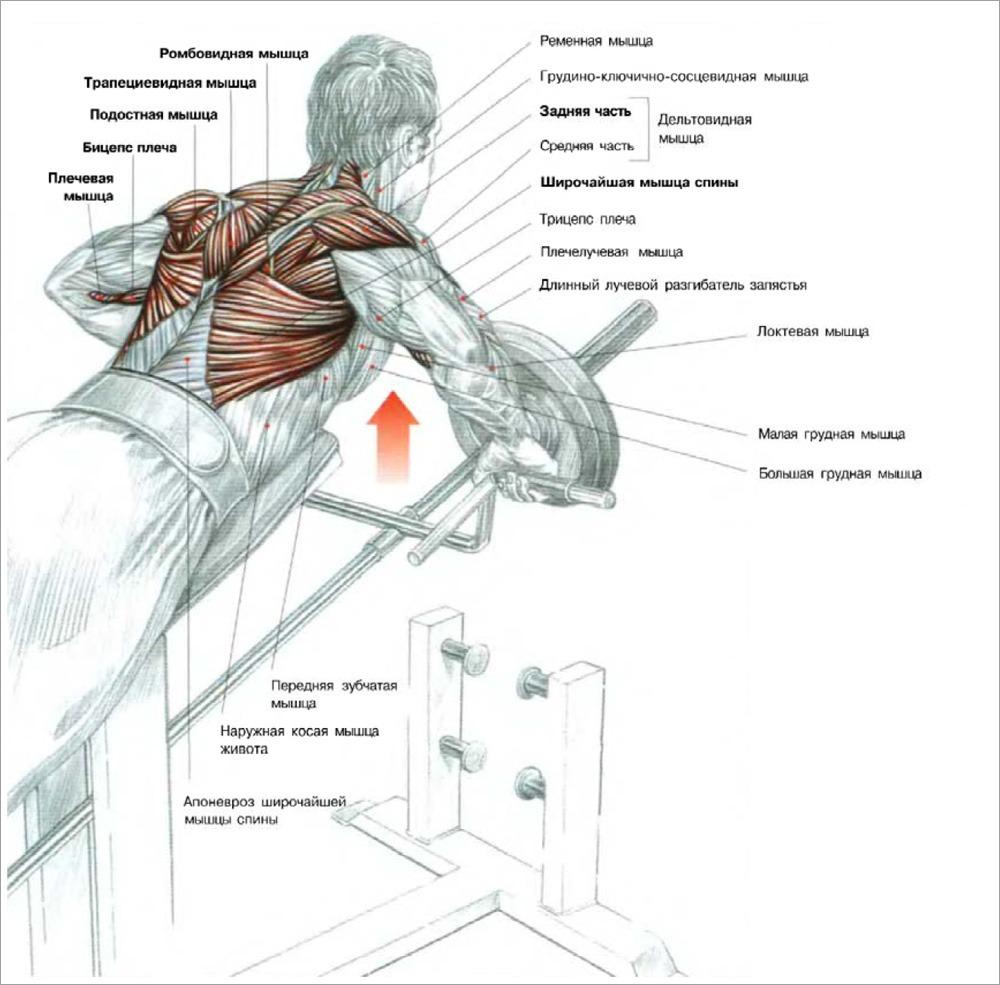 тяга Т-образного грифа с упором