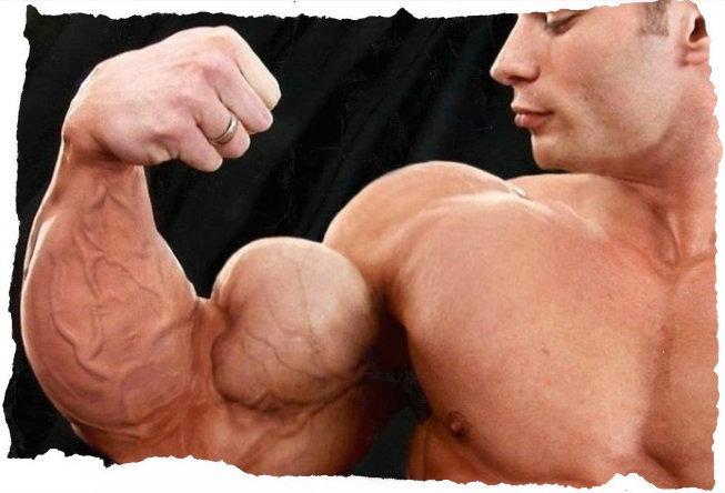 Как накачать руки в домашних условиях мужчине?