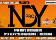 Indy Pro 2018